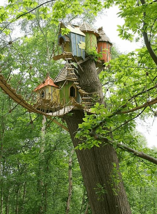 árbol de la casa