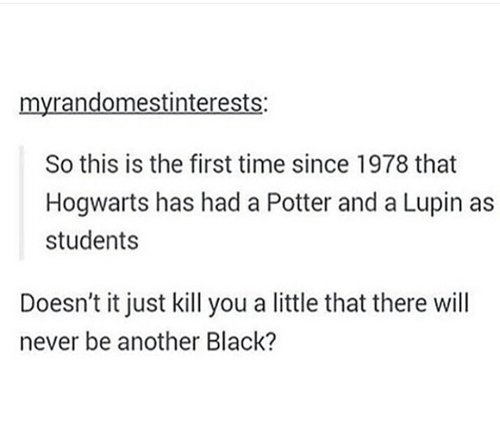 harry-potter-negro