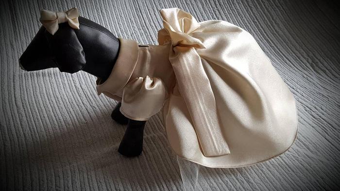 vestido de dama de honor color crema para perros