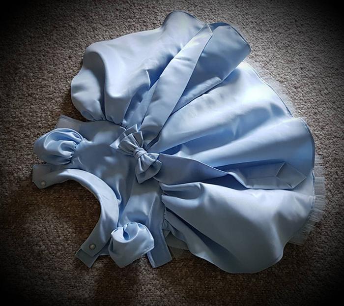 vestido de novia de perro azul pálido
